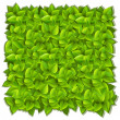 Royalty-Free Stock Imagen vectorial: Background of green leaves