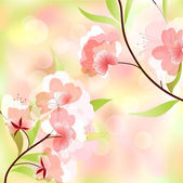 Spring background with cherry blossoms — Stock Vector