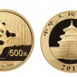 Gold panda coin — Stock Photo