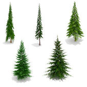 3d trees pack isolated on white with ground shadows — Stock Photo