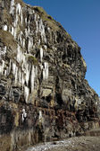 Thawing cascade of icicles on a cliff face — Stok fotoğraf