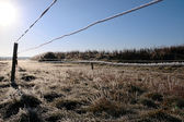 Ice coated wire fence in a farm field — Stock Photo