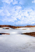 Kar kaplı Golf Sahası golf sahası ile sarı bayrak — Stok fotoğraf