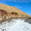 The cashen estuary ballybunion in frozen landscape — Stock Photo