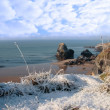 Frost and snowcovered coastal beach view and virgin rock — Stock Photo #20726157