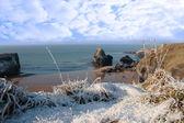 Heladas y nevadas costera playa vista y roca virgen — Foto de Stock