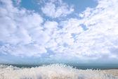 Cubierta de nieve helada hierba zanja vista — Foto de Stock