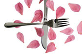 Crossed silver fork and knife isolated with rose petals — Stock Photo