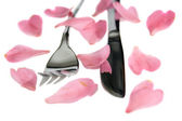 Silver fork and knife isolated with rose petals — Stock Photo