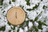 A clock face in the snow — Stock Photo
