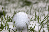 A lone single golf ball in the snow — Stock Photo