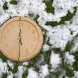 Split clock face in snow — Stock Photo #32808665