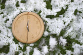 Split clock face in the snow — Foto Stock