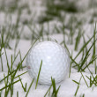 Stock Photo: Golf ball in snow covered grass