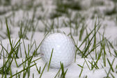 Golf ball in the snow covered grass — Stock Photo