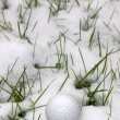 Stock Photo: Single dimpled golf ball in snow covered grass