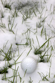 Single dimpled golf ball in the snow covered grass — Stock Photo