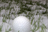 Single golf ball in the snow — Stock Photo