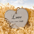 Single wooden heart in a love nest — Stock Photo