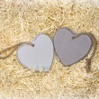 图库照片: Wooden hearts in love nest