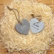 Couple of wooden heart in a hot love nest — Stock Photo