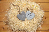 Couple of wooden heart in a hot love nest — ストック写真