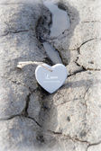 Couple of wooden love hearts on the sand bank — Stock Photo