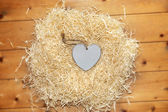 Lone blue wooden heart in a love nest — Stock Photo