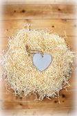 Lone wooden heart in a love nest — Stock Photo