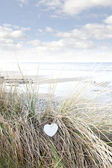 Single wooden heart on beach dunes — Stock Photo