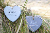 Two love hearts on grassy dunes — Stock Photo
