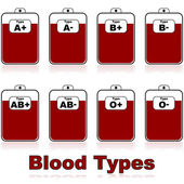 Blood types — Stock Vector