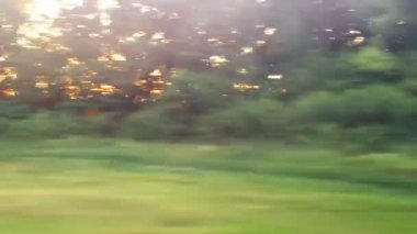 Vista desde la ventana del tren — Vídeo de Stock