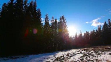 Winter landscape — Stock Video