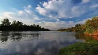 Summer river — Stockvideo