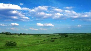 Green field — Vídeo stock