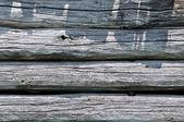 Logs de velhos — Fotografia Stock