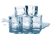 Five ice cubes with reflection — Stock Photo