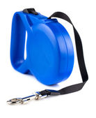 Blue retractable leash for dog — Stock Photo