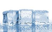 Três cubos de gelo derretido — Foto Stock