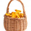 Stock Photo: Wicker basket with chanterelle mushrooms