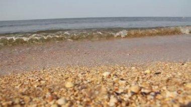 Havets kust, surfa och nedgång sekvens — Stockvideo