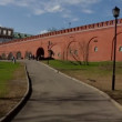 Moscow kremlin wall panorama — Stock Video