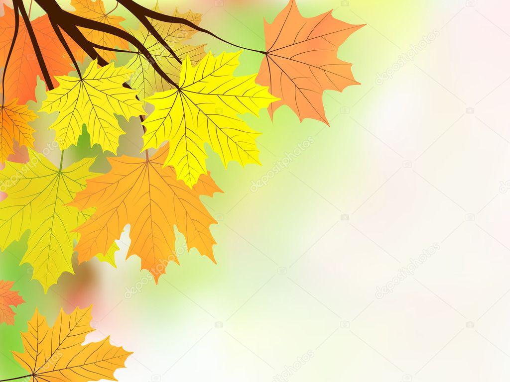 秋天的叶子,很浅白色背景上的焦点.eps   矢量文件包括 &mdash