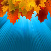 Sonbahar yaprakları akçaağaç ve güneş ışığı. eps 8 — Stok Vektör