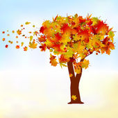 Maple tree, autumn leaf fall. EPS 8 — Stock Vector