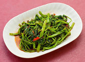 Stir Fried Vegetables on plate — Foto de Stock