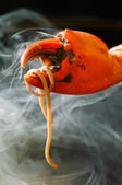Crab legs seafood platter on background — Stock Photo