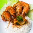 Shrimp serve with rice asia food. — 图库照片