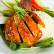 Chicken Rice on background, asia food — Stockfoto